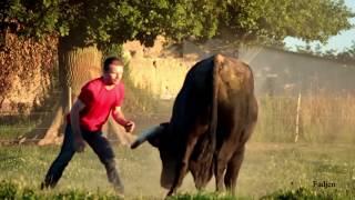 Download Un homme rentre dans le champ d'un taureau de corrida de plus de 700 kg . Video