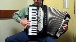 Download Ocean (The Legend of Zelda: The Wind Waker) [accordion cover] Video