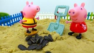 Download Детское видео - Свинка Пеппа сажает подсолнухи Video