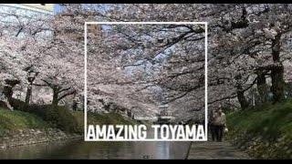 Download AMAZING TOYAMA MOVIE(英語/English) Video