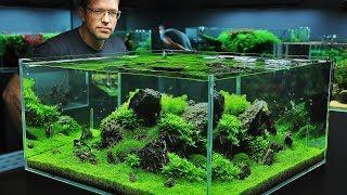 Download The Green Aqua Showroom (2018 cinematic edition) Video