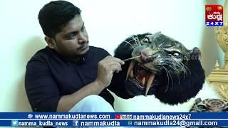 Download Namma Kudla Tulu News 24X7:ART OF PILI MANDE Video