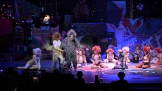 Download The Moments of Happiness, Gus the Theater Cat, and Growltiger's Last Stand Video