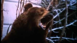 Download 12 Monkeys - Trailer Video