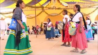 Download Bailando en la mixteca | México Video