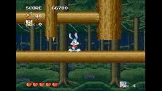 Download Mega Drive Longplay [251] Tiny Toon Adventure: Buster's Hidden Treasure Video