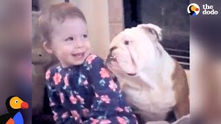 Download Little Girl And Her Bulldog Are Helping Each Other Grow Up | The Dodo Video