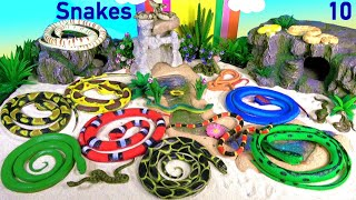 Download Snakes Serpent Reptile Viper Basilisk Vermin Slithery Nope Ropes 10 Video