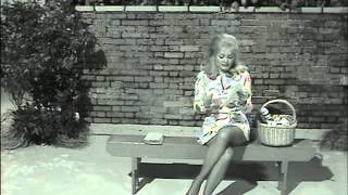 Download Benny Hilll skirts and legs 2 Video