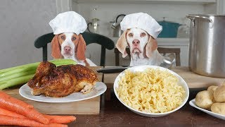Download Chef Dogs Cook Chicken Noodle Soup: Funny Dogs Maymo & Potpie Video