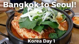 Download Bangkok to Seoul, South Korea (Day 1) Video