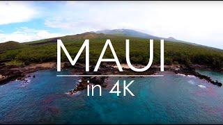 Download Maui in 4K | The Vine Studios Video