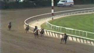 Download Risen Star - 1988 Belmont Stakes (Dave Johnson's ABC-TV Call) Video