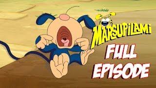 Download Bobo Leaves Home - Marsupilami FULL EPISODE - Season 2 - Episode 17 Video
