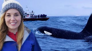 Download Why Misunderstanding Killer Whales is Threatening their Survival | Earth Unplugged Video