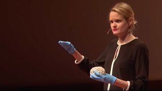Download Think about your brain | Nikolina Sesar | TEDxUniversityofZagreb Video