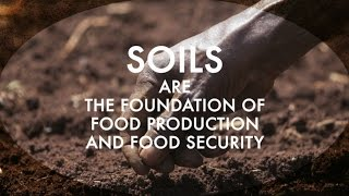 Download The Status of the World's Soil Resources Video