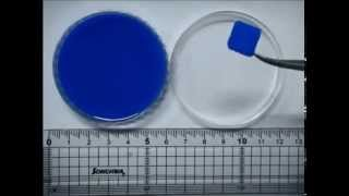 Download Hydrogel-laden paper scaffold system for origami-based tissue engineering Video