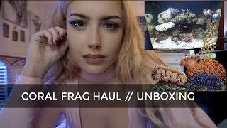 Download CORAL FRAG HAUL (Live Corals Shipped to My House) Video