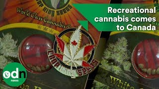 Download Recreational cannabis comes to Canada Video