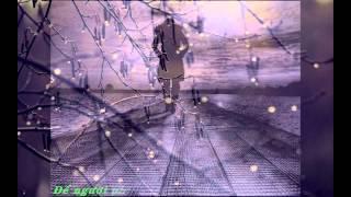 Download [ Lyric ] Diễm xưa - Đàm Vĩnh Hưng Video