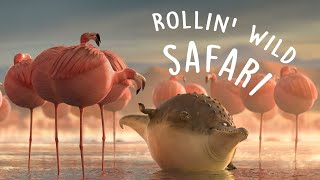Download ROLLIN` SAFARI - what if animals were round? Video