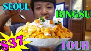 Download $37 Shaved Ice VS. $8 Shaved Ice in Korea (LUXURY Bingsu Tour) Video