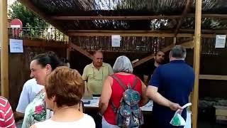 Download As vodas protagonizan a feira de artesanía do Incio Video