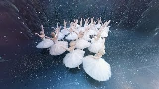 Download The Nutcracker in 360 degrees (The Royal Ballet) Video