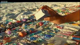 Download Albatrosses Swallow Plastic Waste | Hawaii: Message in the Waves | BBC Earth Video