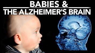 Download What can Babies tell us about Alzheimer's? Video
