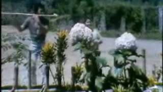 Download RHOMA irama - Primadona Desa Video