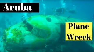 Download Scuba Diving Aruba Plane Wrecks Video