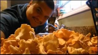 Download August 2016 Mushroom Finds Video
