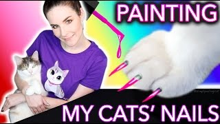 Download Painting my Cats' Nails Video