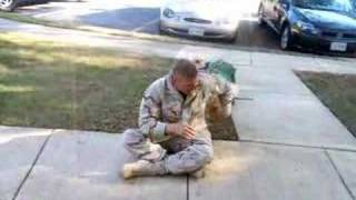 Download Seeing my dog the day I got back from Afghanistan Video