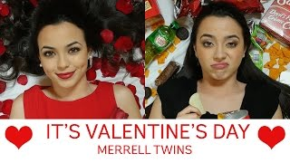 Download It's Valentine's Day Song - Merrell Twins Video
