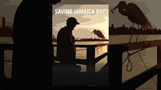 Download Saving Jamaica Bay Video