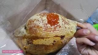Download Cách Ăn Mật Ong Rừng :)) VLOG#7 Video