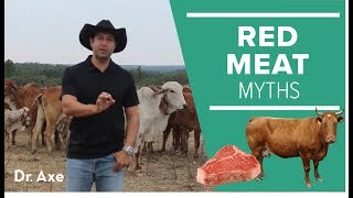 Download Everything You Know About Red Meat Is Wrong Video