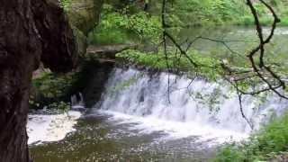 Download Průhonice park (UNESCO) Video