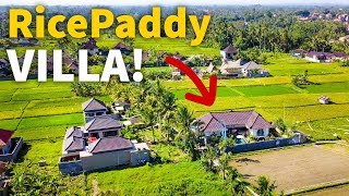 Download Living in Bali - RICE PADDY VILLA TOUR | Balinese House in Indonesia $77 Per Night! Video