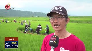 Download 織羅一起Mipaliu工作營 4天活動志工同學習 2018-10-16 Yami IPCF-TITV 原文會 原視族語新聞 Video