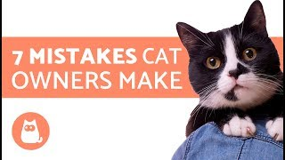 Download 7 Mistakes cat owners make Video