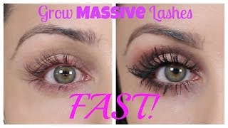 Download How To Grow Massive Eye Lashes FAST | Kristi-Anne Beil Video