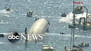 Download Plane Sunk in Sea To Create Artificial Reef Video