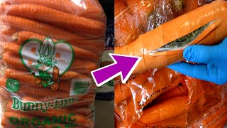 Download Craziest and Most Interesting Ways People Hide Things! Video