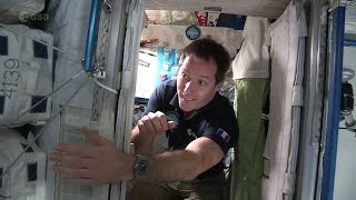 Download Thomas Pesquet's space bedroom (French) Video