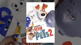 Download The Secret Life of Pets 2 Video