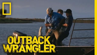 Download Small Boat, Giant Croc | Outback Wrangler Video